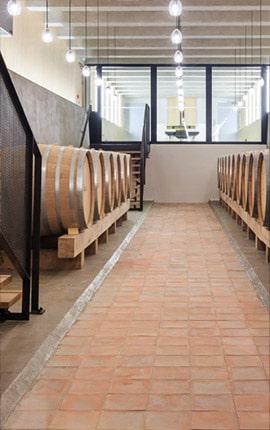 Cave vin Château Réal d'Or